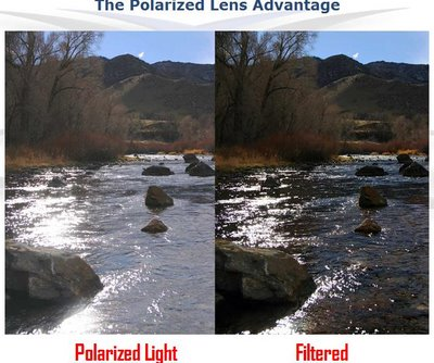 Polarized Lenses from Optique, opticians in Battersea